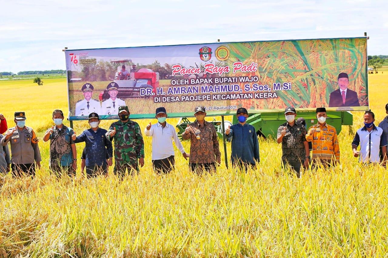 Bupati Wajo Ikut Panen Raya Padi Pertanian Terpadu di Dusun Masiae